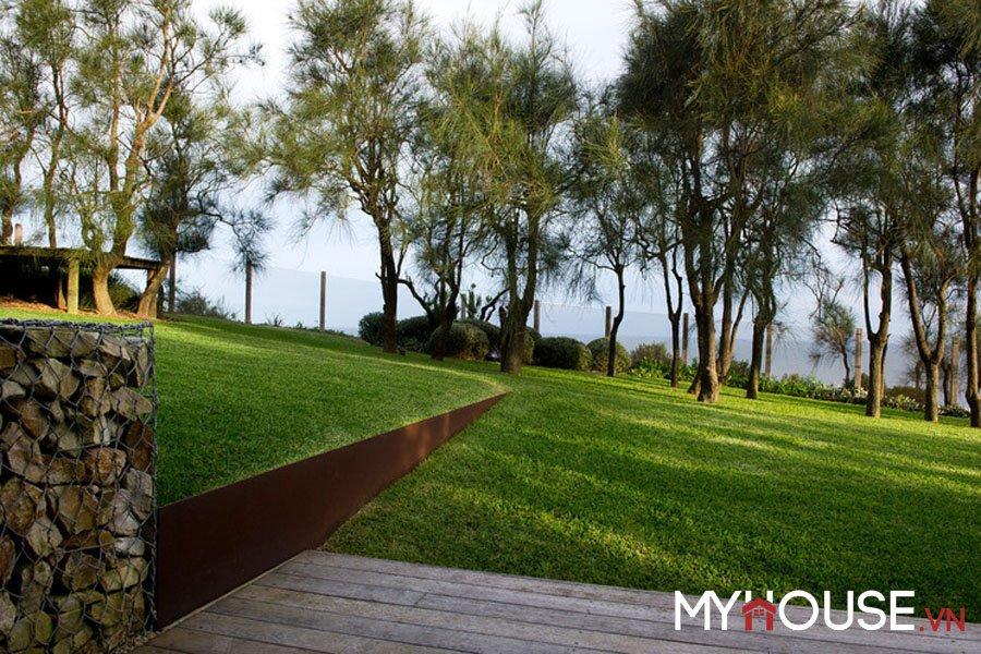 chăm sóc vườn còn có thể để mưa chảy và len vào cỏ theo những đường rãnh tự nhiên