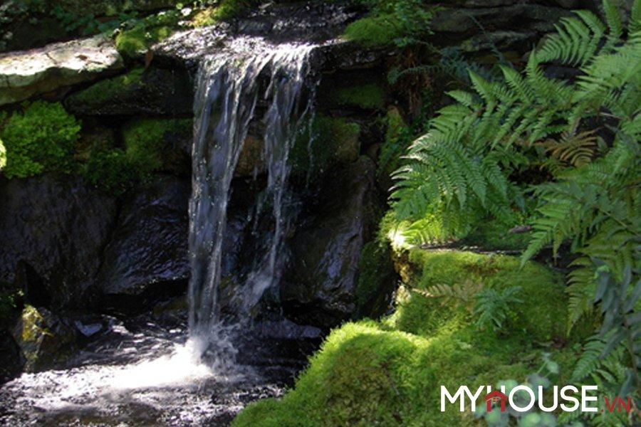 sân vườn biệt thự thiết kế hồ nước Thiên nhiên